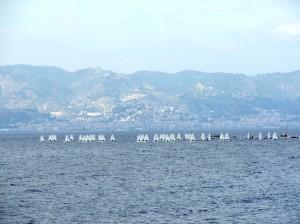 Reggio Calabria Mediterranean Cup 2