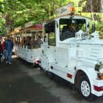 Tuttovela: due trenini faranno da navetta gratuita per i visitatori del Villaggio della Vela del 31°...
