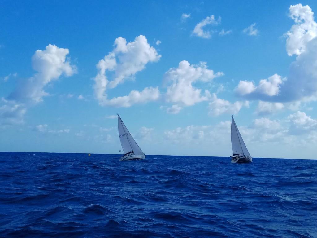regata-cvl-cetraro