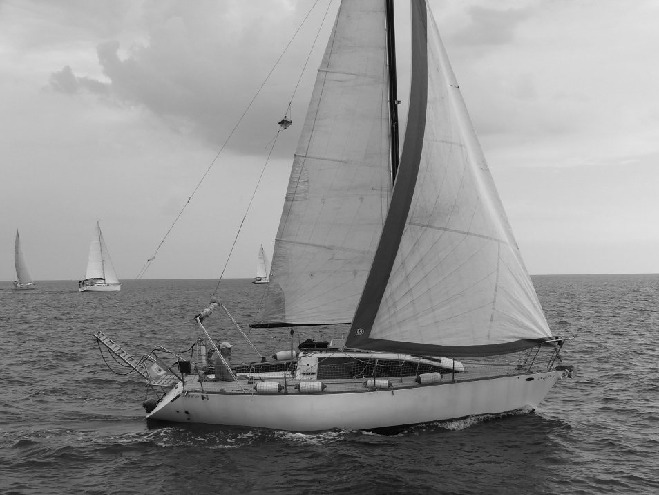 pantavela-cvl-cetraro-19
