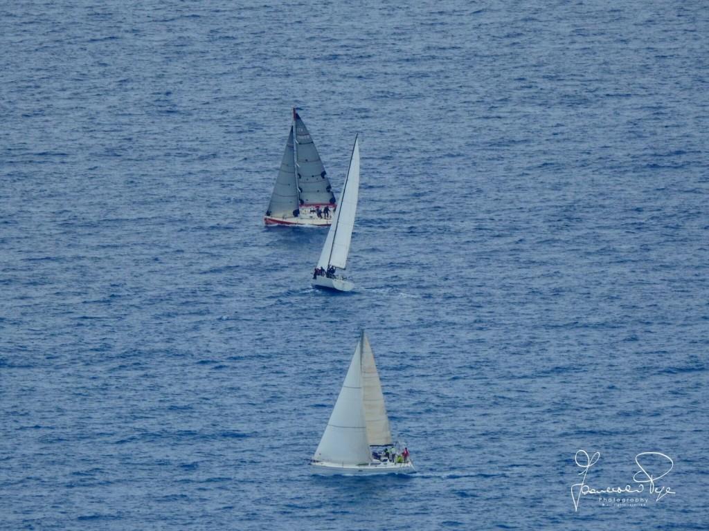 cetraro-sailing-cup-1-1