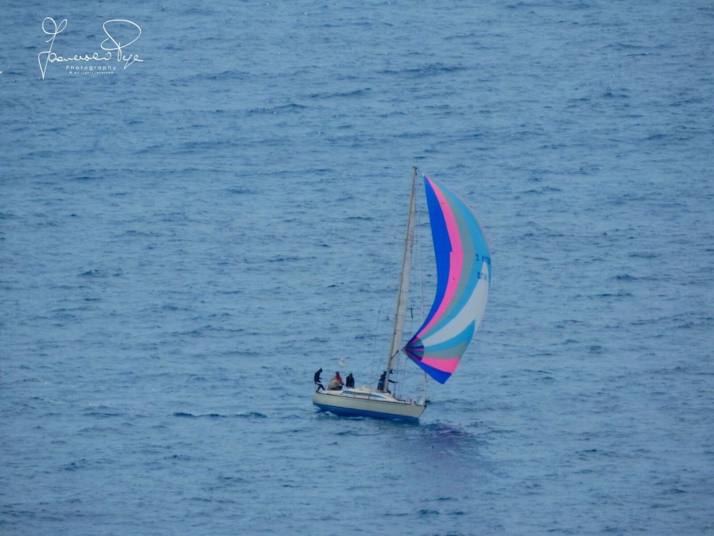 cetraro-sailing-cup-1-12