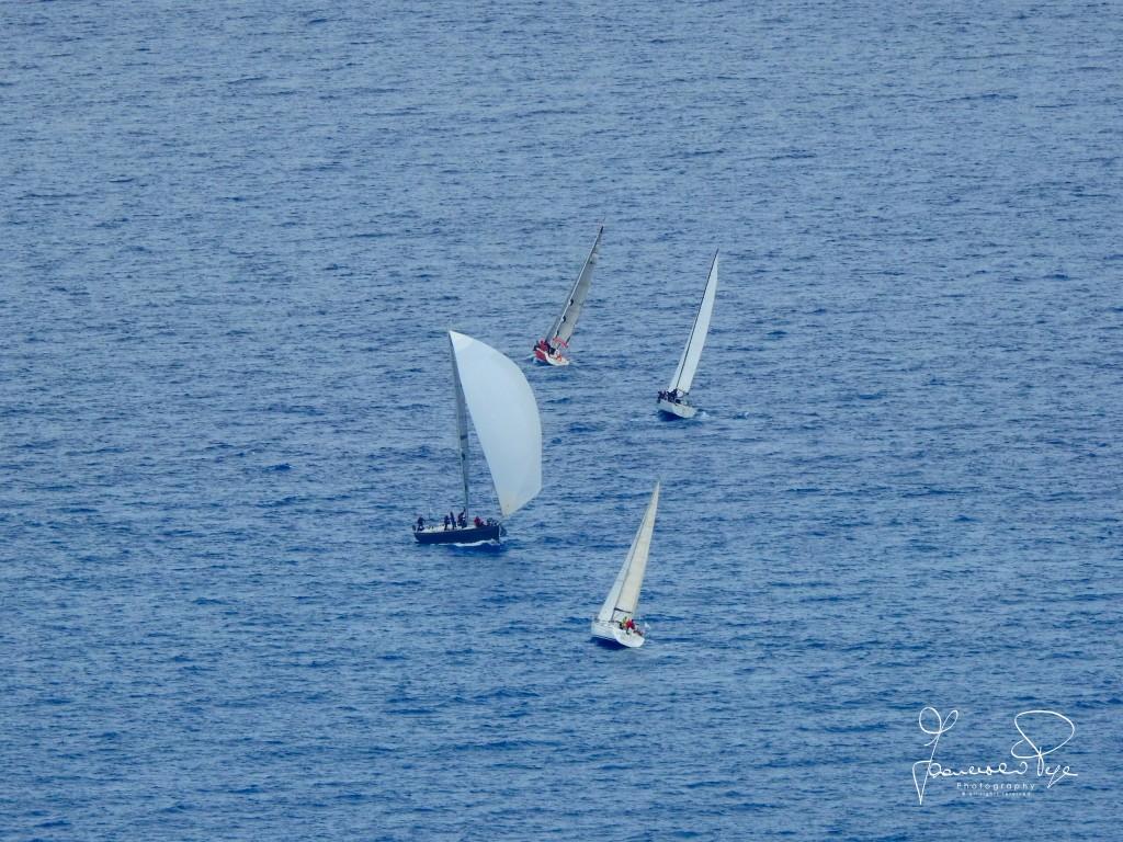 cetraro-sailing-cup-1-13