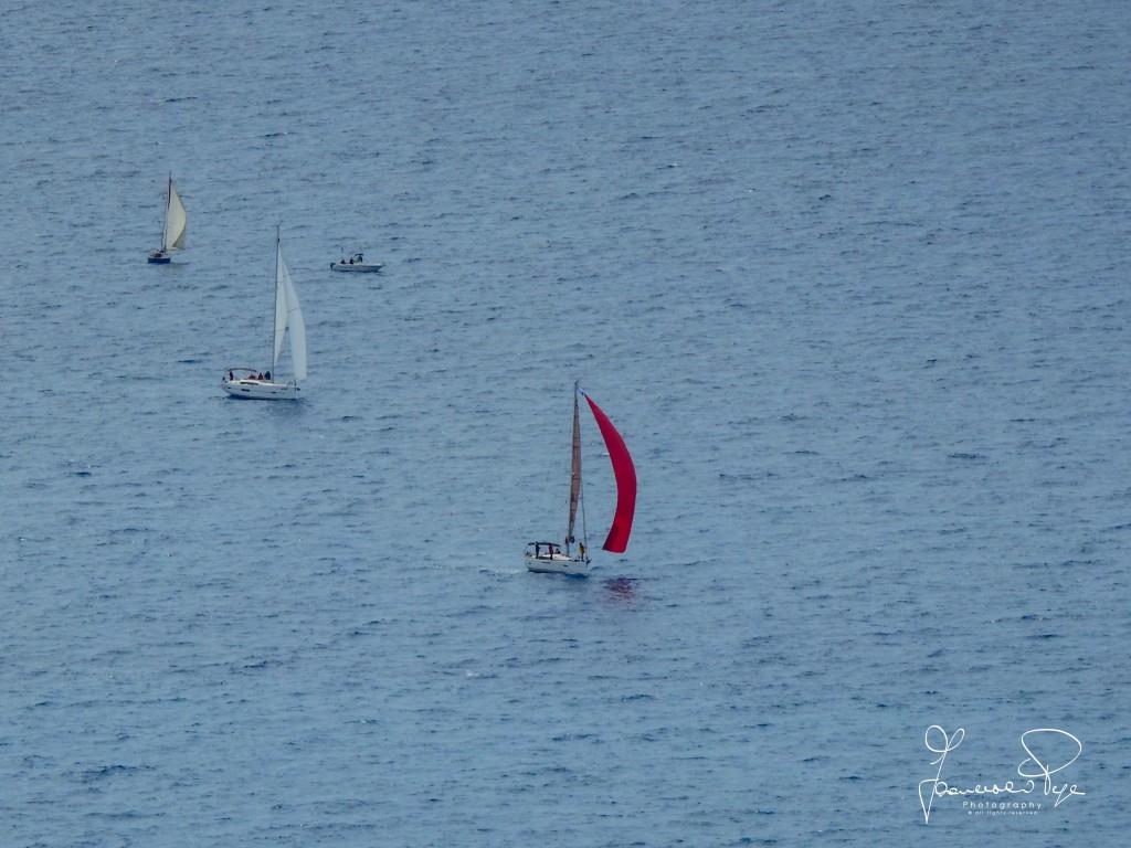cetraro-sailing-cup-1-14