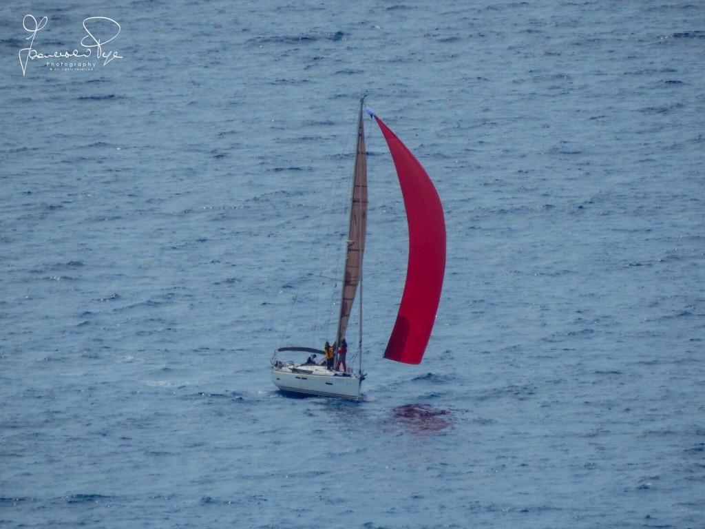cetraro-sailing-cup-1-16
