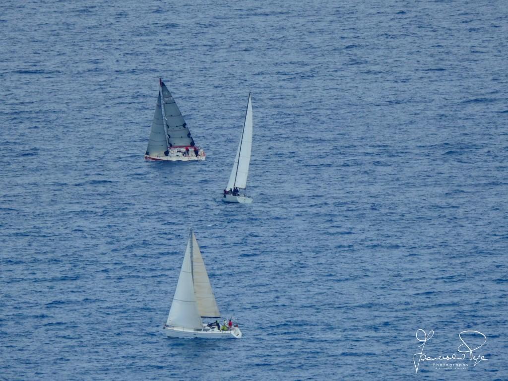 cetraro-sailing-cup-1-3