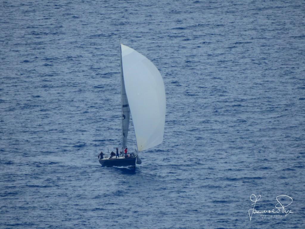 cetraro-sailing-cup-1-8