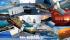 le-foto-della-mostra-vela-pratica-la-vela-e-il-mare